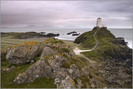 Stephen Spraggon - The lighthouse at the edge of Llanddwyn Islan, under a pink cloudy sky, Anglesey, Wales, United King
