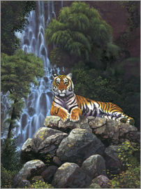 Chris Hiett - Tiger waterfall