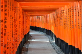 HADYPHOTO by Hady Khandani - TORII AT FUSHIMI INARI SHRINE   KYOTO   JAPAN 8