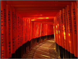 Torii pathway at Fushimi Inari Shrine