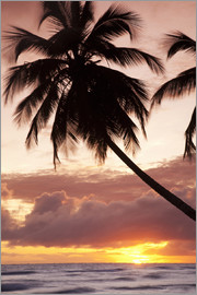 Angelo Cavalli - Tropical sunset, Bridgetown, Barbados, West Indies, Caribbean, Central America