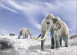 Leonello Calvetti - Two Woolly Mammoths in a snow covered field with a few bison.