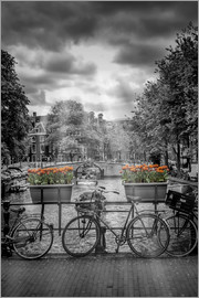 Melanie Viola - Typical Amsterdam II