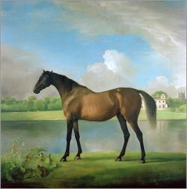 George Stubbs - Viscount Bolingbroke's favourite hunter