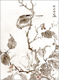 Kawanabe Kyosai - Bird and Frog