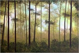 Herb Dickinson - FOREST MORNING