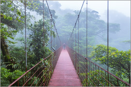Matteo Colombo - Hiker on a suspension bridge, Costa Rica