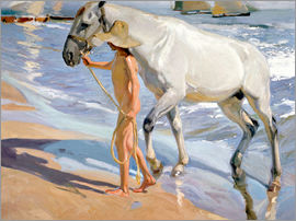Joaquin Sorolla y Bastida - Washing the Horse