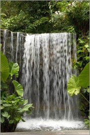 Cindy Miller Hopkins - Waterfall in the Botanical Garden Orchid Garden in Singapore