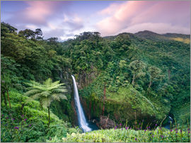 Matteo Colombo - Waterfall and forest at sunset, catarata del Toro, Costa Rica, Central America