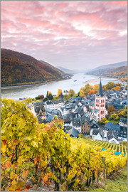 Matteo Colombo - Vineyards of Bacharach on the river Rhine in autumn, Germany