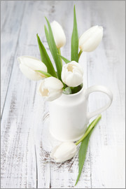 White tulips on whitewashed wood