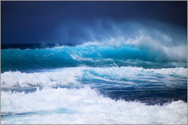 Tomas del Amo - Waves off Hawaii, Oahu