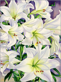 Christopher Ryland - White Lilies, 2008