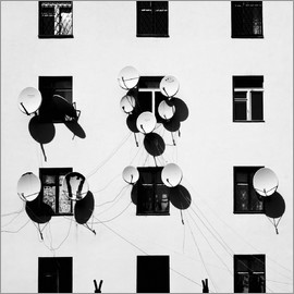 Marina Yushina - Windows