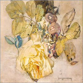 Charles Rennie Mackintosh - Winter Rose