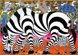 Mustapha - Zebras on foraging