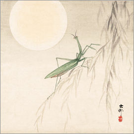 Ohara Koson - Two grasshoppers on a pasture
