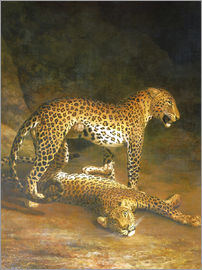 Jacques Laurent Agasse - Two Leopards lying in the Exeter Exchange