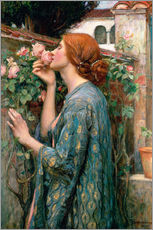 Wall sticker  The Soul of the Rose - John William Waterhouse
