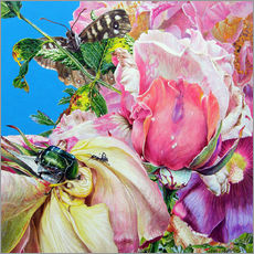 Gallery print  Rosechafer - John Hurford