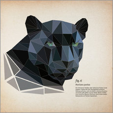 Wall sticker fig6 polygon Panther square