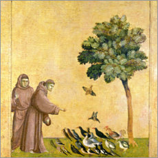 Foam board print  St. Francis of Assisi Preaching to the Birds - Giotto di Bondone