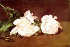 Wall sticker  Branch of White Peonies and Secateurs - Edouard Manet