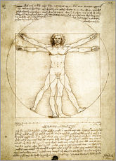 Gallery print  The Proportions of the human figure - Leonardo da Vinci