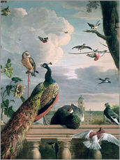 Wall sticker  Palace of Amsterdam with Exotic Birds - Melchior de Hondecoeter