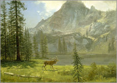 Gallery print  Call of the Wild - Albert Bierstadt