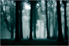 Gallery print  Enchanted forest - Jens Berger