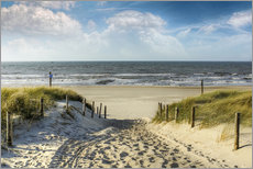 Gallery print  Path through the dunes to the beach - Peter Roder