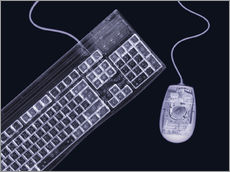 Mark Sykes - Keyboard and mouse, simulated X-ray