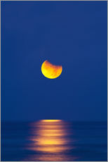 Wall sticker  Partially eclipsed setting moon - David Nunuk