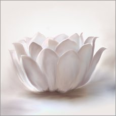 Wall sticker  White lotus - Christine Ganz