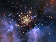 Wall sticker  Open star cluster NGC 3603, HST image - NASA