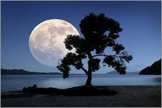 Wall sticker Moon rising over the sea