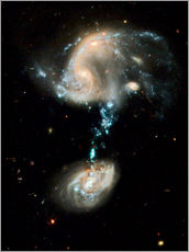 Wall sticker  Interacting galaxies Arp 194, HST image - NASA