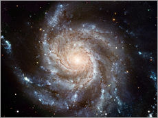 Gallery print  Spiral galaxy M101 - NASA