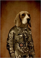 Gallery print  beagle - Durro Art