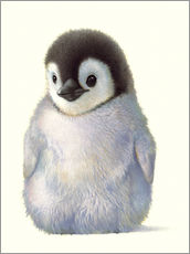 Wall sticker  Penguin chick - John Butler