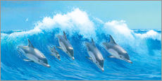 Gallery print  Leaping Dolphins - John Butler