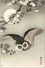 Wall sticker  Owl in flight - Ohara Koson