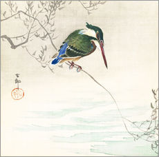 Gallery print  The kingfisher - Ohara Koson