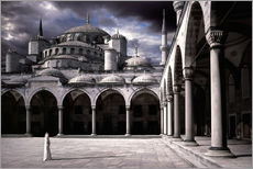 Gallery print  Lady and the mosque - Daniel Murphy