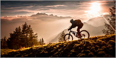 Wall Stickers  Golden hour biking - Sandi Bertoncelj