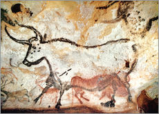 Gallery print  Bull, Lascaux cave