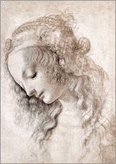 Wall sticker  Study of Mary Magdalene - Leonardo da Vinci