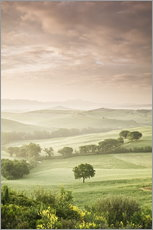 Gallery print  Sunrise in the province of Siena, Tuscany - Markus Lange